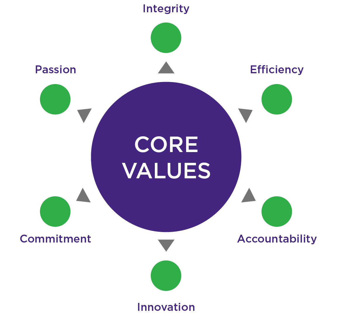 Natrol Core Values